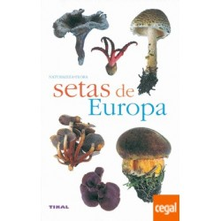 SETAS DE EUROPA